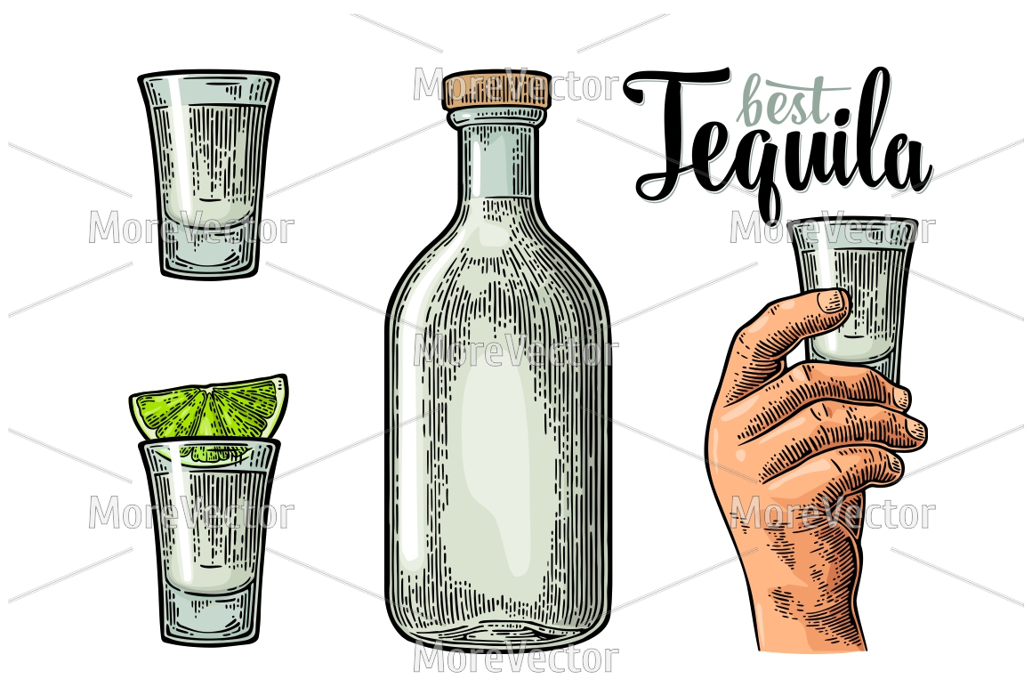 Illustration, pattern and posters Tequila with engraving.  example image 2