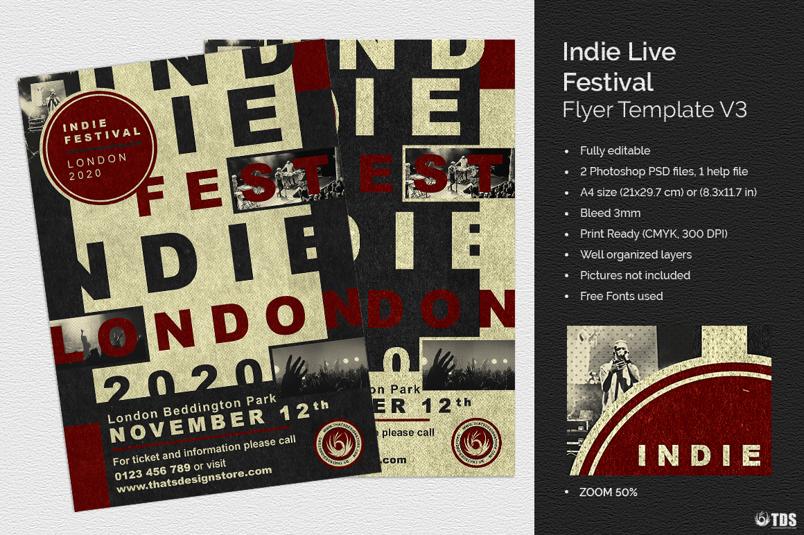Indie Live Festival Flyer Template V3 example image 1