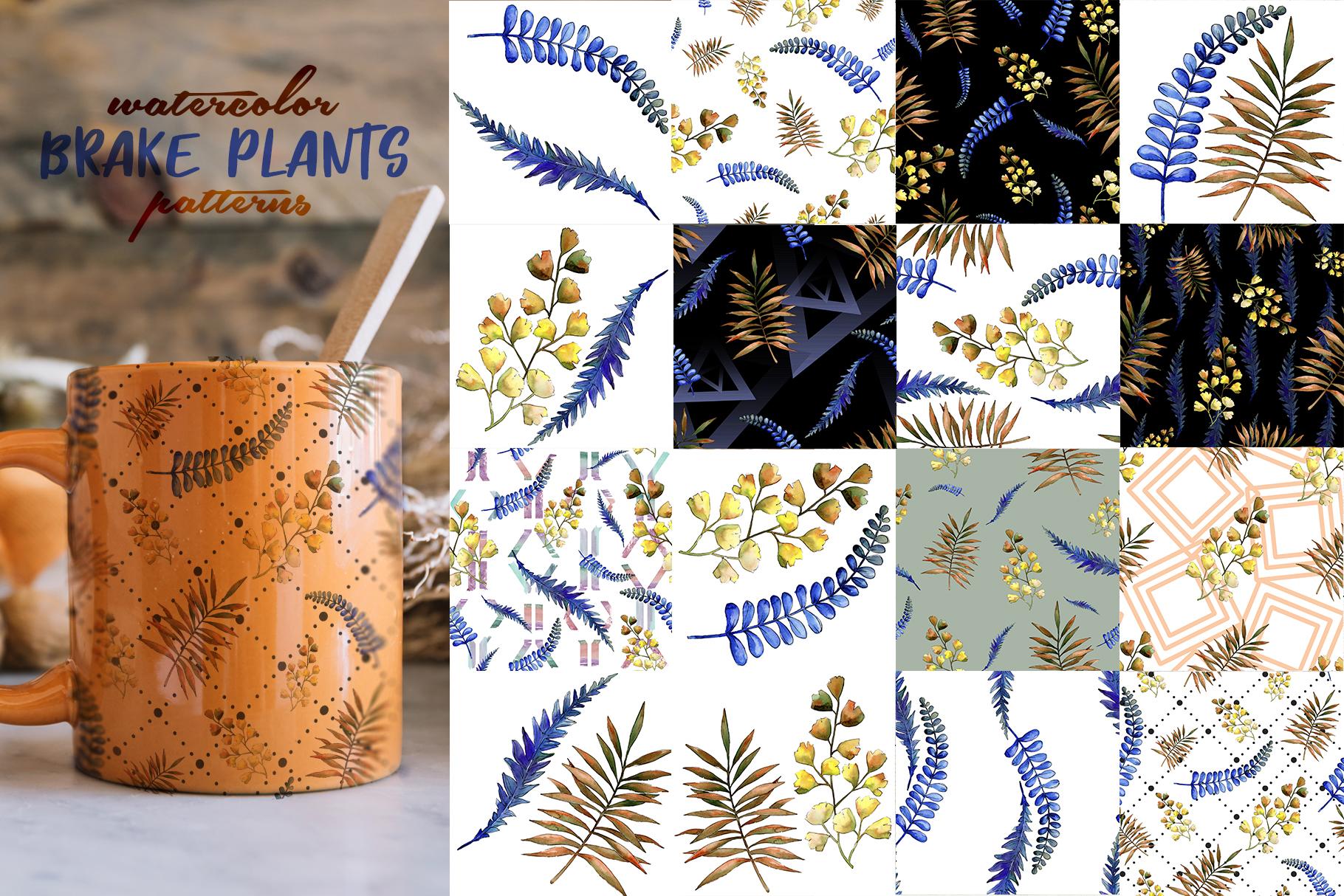 Brake plants PNG watercolor set example image 7