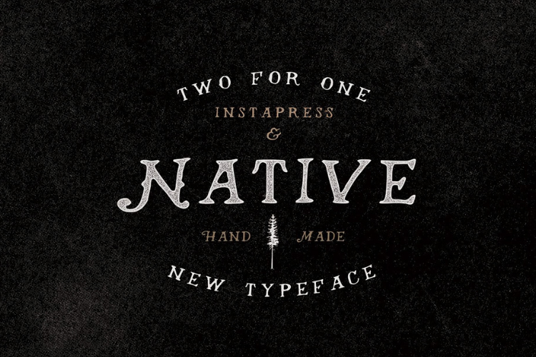 Native Instapress example image 1