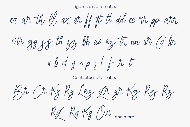 tailorella script example image 2