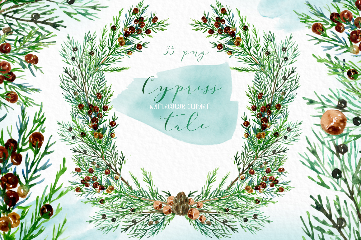 Cypress tale. Watercolor clipart. Cypress christmas branches example image 6