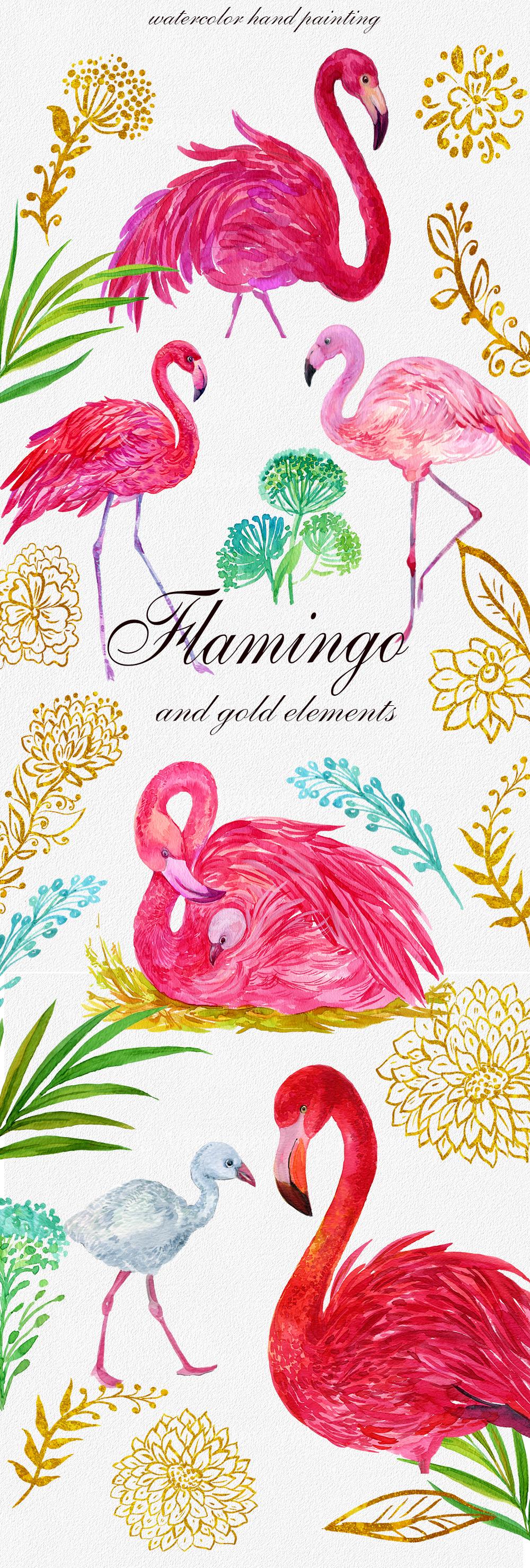 Flamingo.birds clipart. Watercolor Illustration example image 2