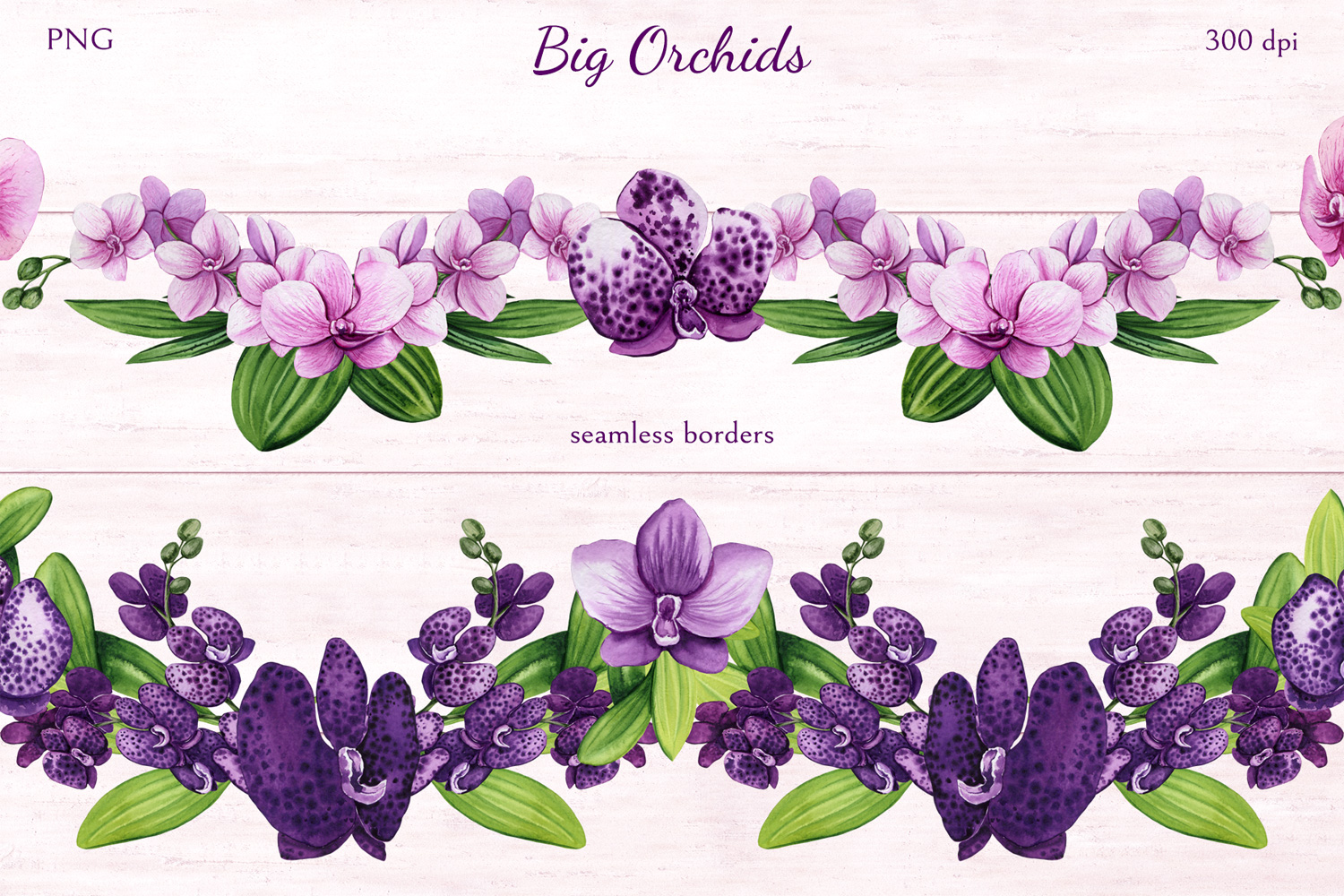 Big Orchids example image 4