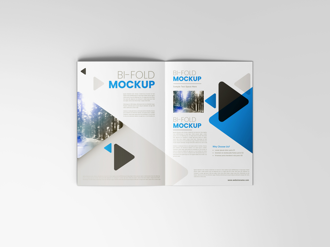 A4 Bifold Mockups V2 example image 7