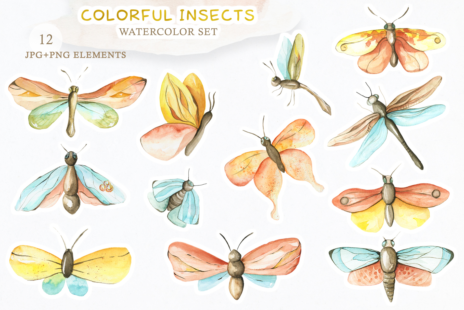 Watercolor Set Colorful Insects example image 2
