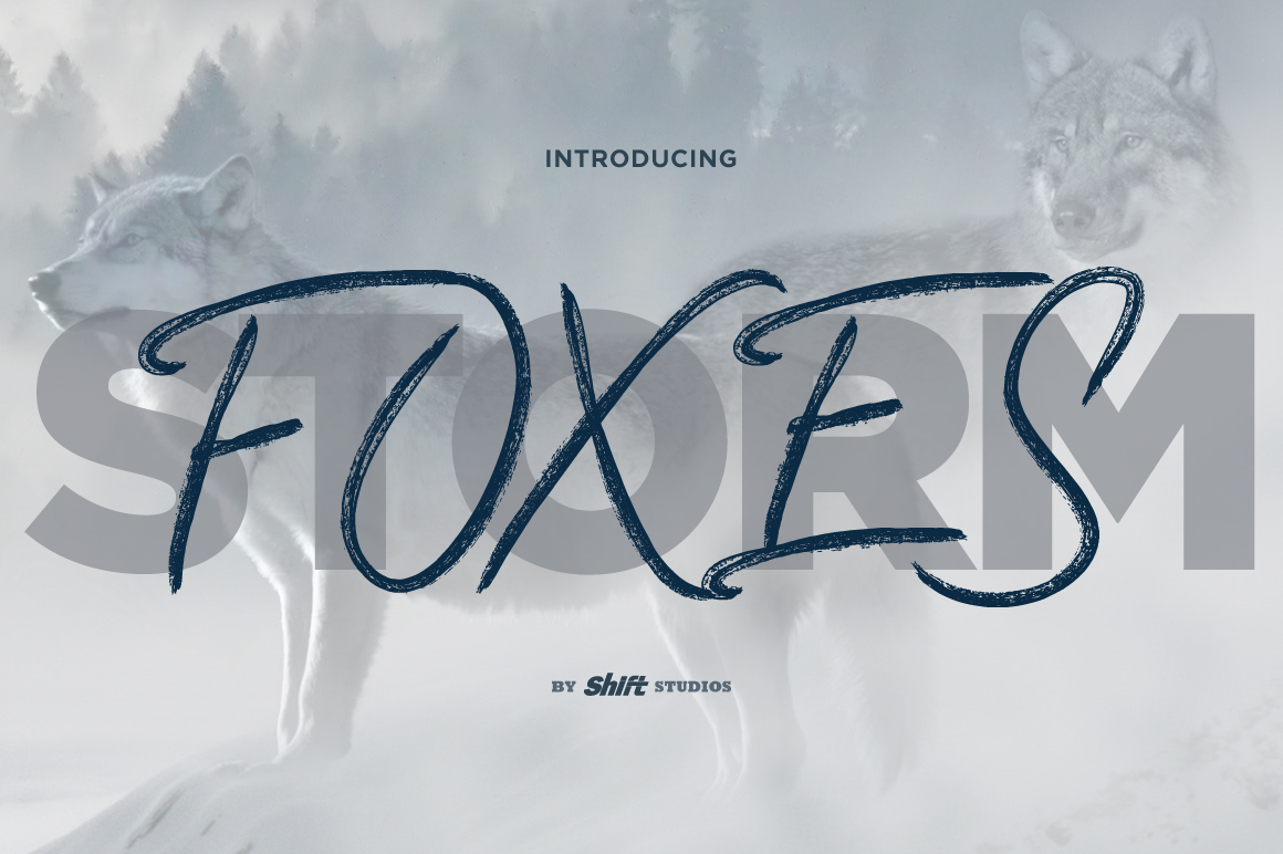 Foxes Typeface example image 1
