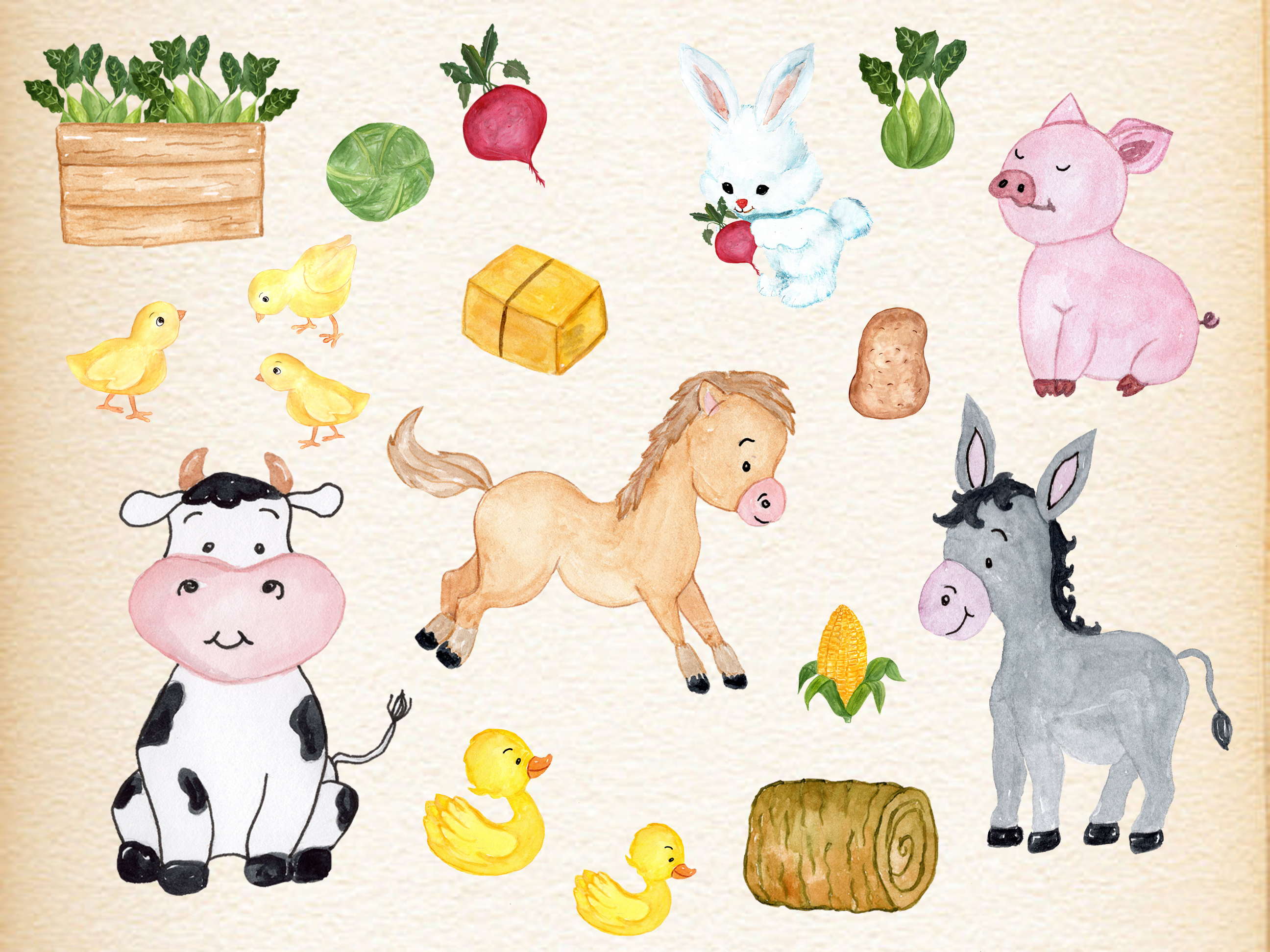 Farm Animals Clipart example image 4