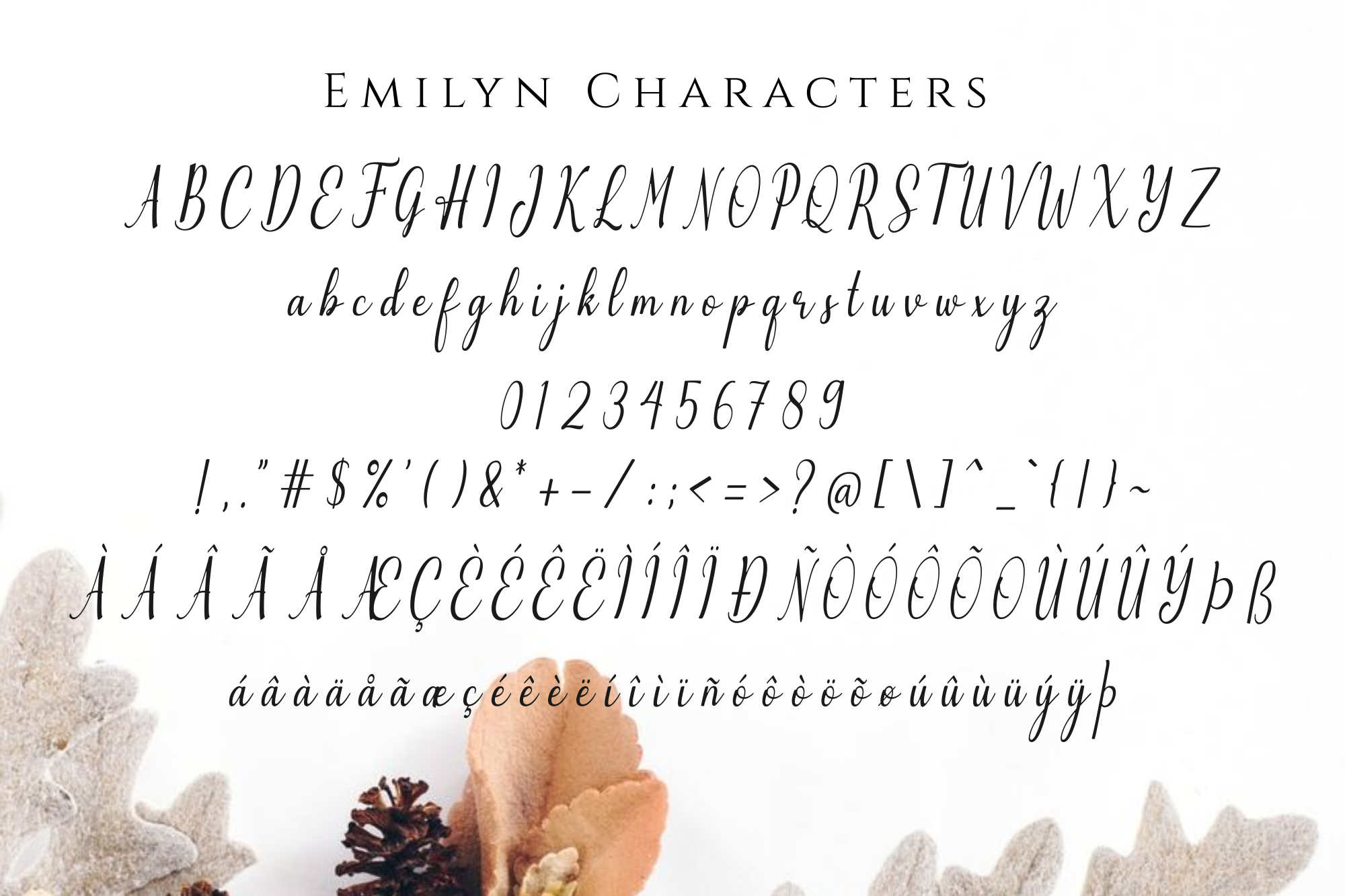 Emilyne example image 14