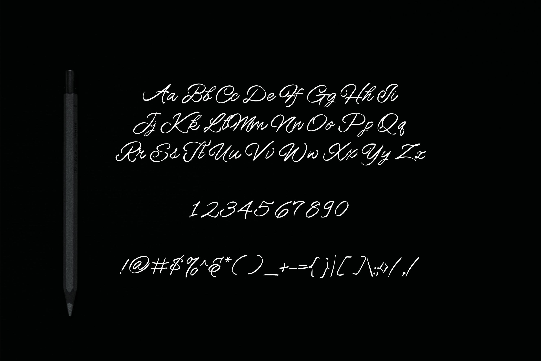 Howar Script | Elegant Handwritted example image 6