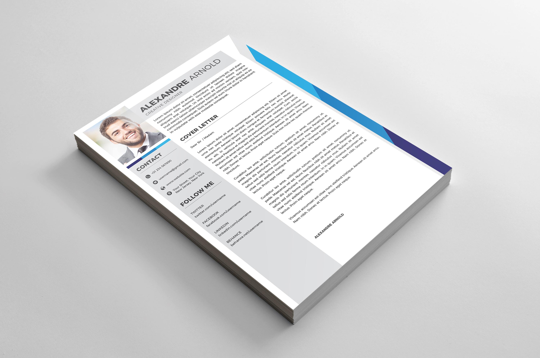 Resume PRO example image 2