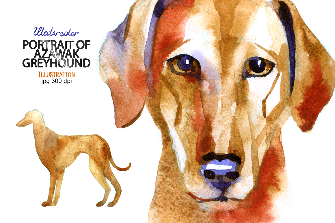 Watercolor Azawak Greyhound. example image 1