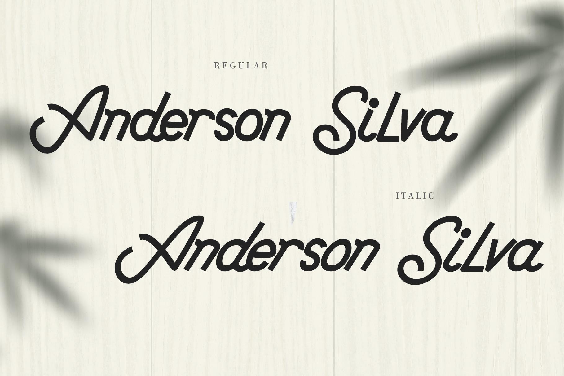 Anderson Silva example image 7