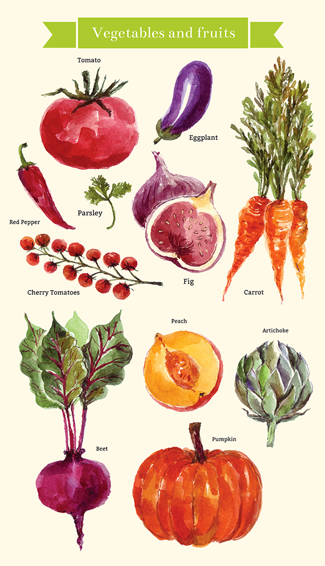 Watercolor vegetables & fruits example image 12