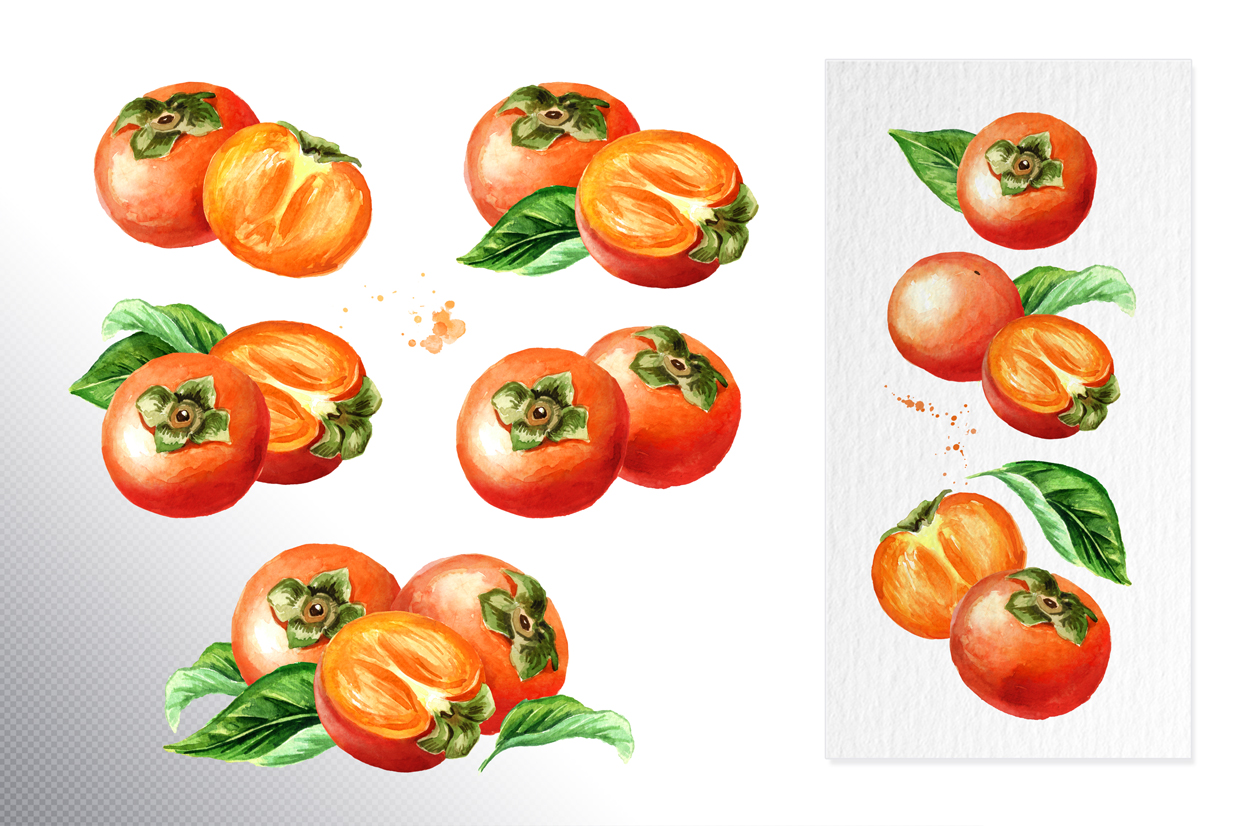 Persimmon. Watercolor set example image 2