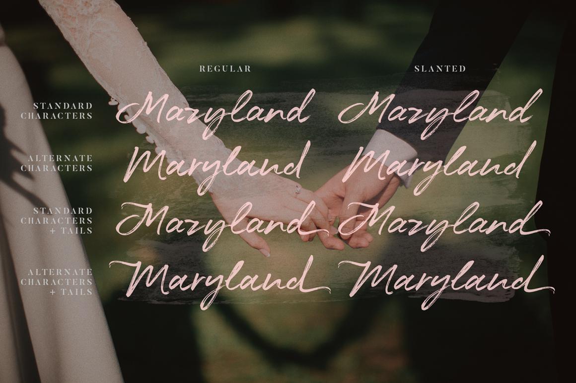 Maryland Wedding Font example image 7