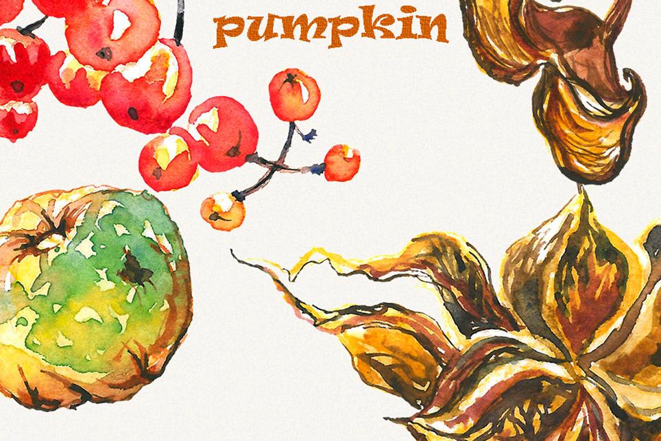 Pumpkin clipart, pumpkins clipart, watercolor pumpkin example image 4