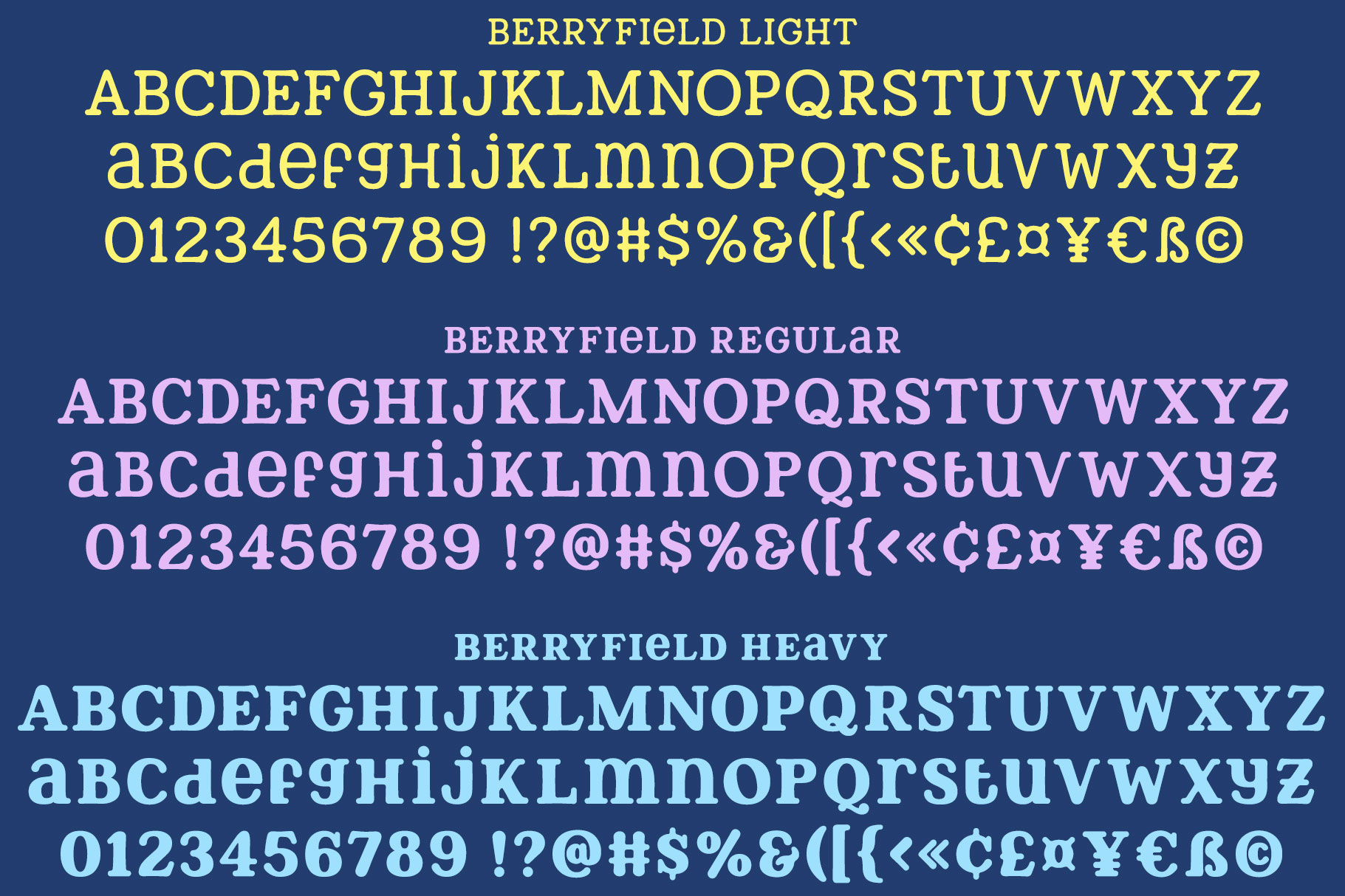 Berryfield - a quirky slab serif font family! example image 2