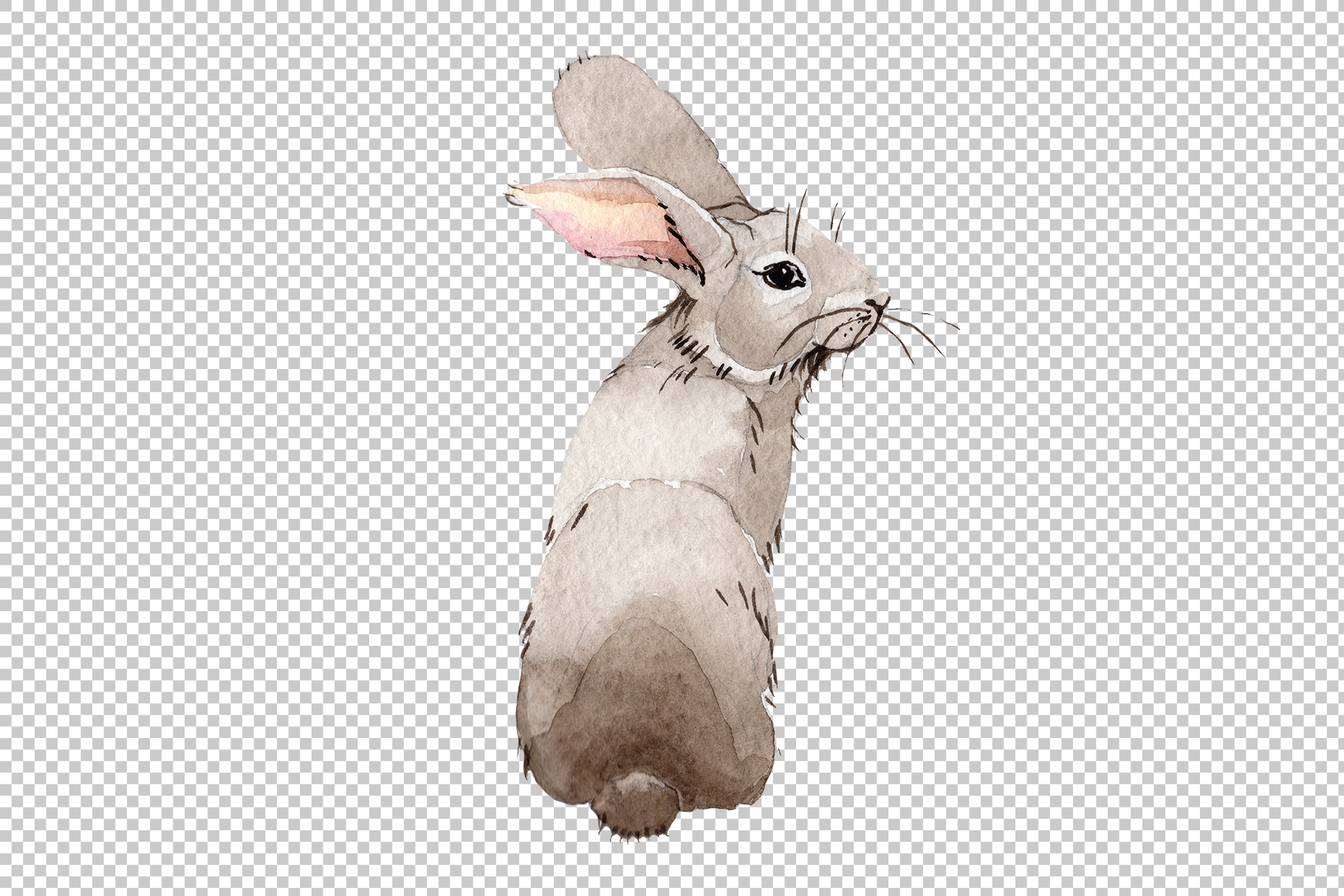 Easter bunny Watercolor png example image 7