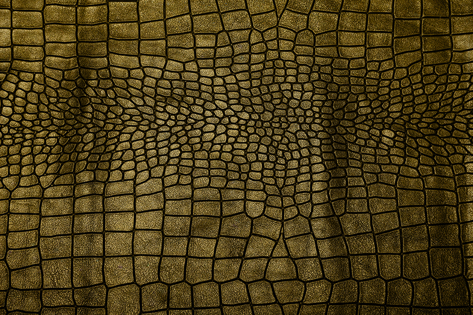 Leather Textures example image 5