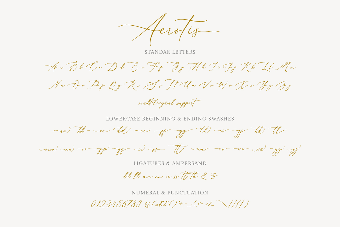 Aerotis, a Modern Calligraphy Font example image 8