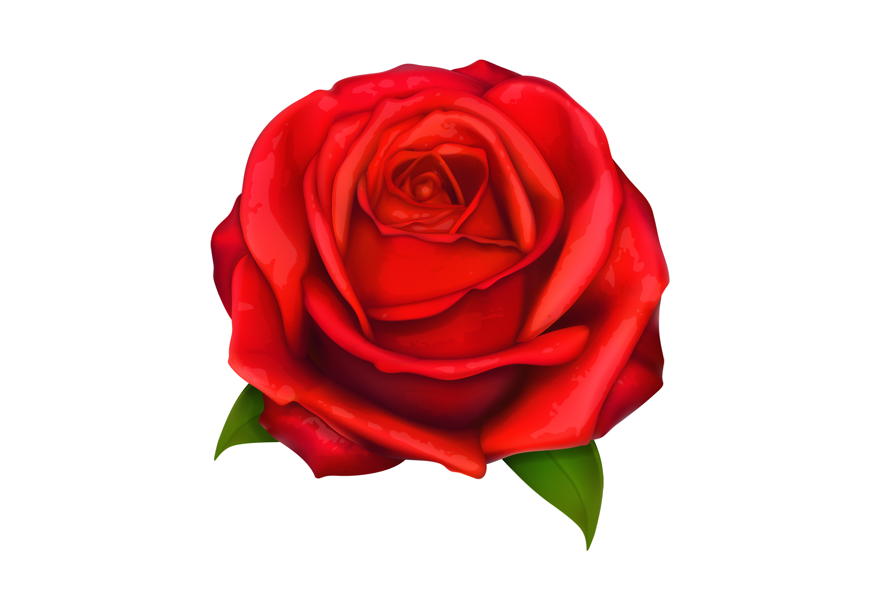 Rose, symbol of love, romantic Valentine's Day, vectors set example image 6