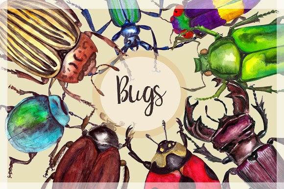 Watercolor Beetles Clipart & Print example image 1