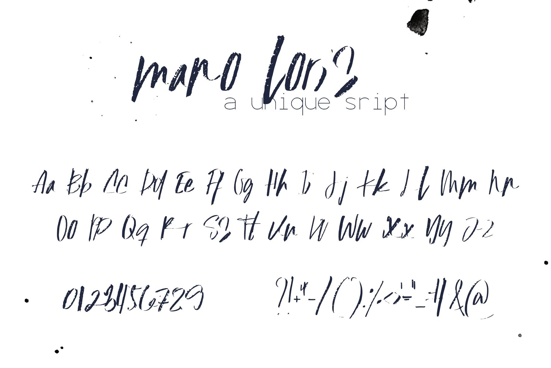 Mano Loris Font example image 11