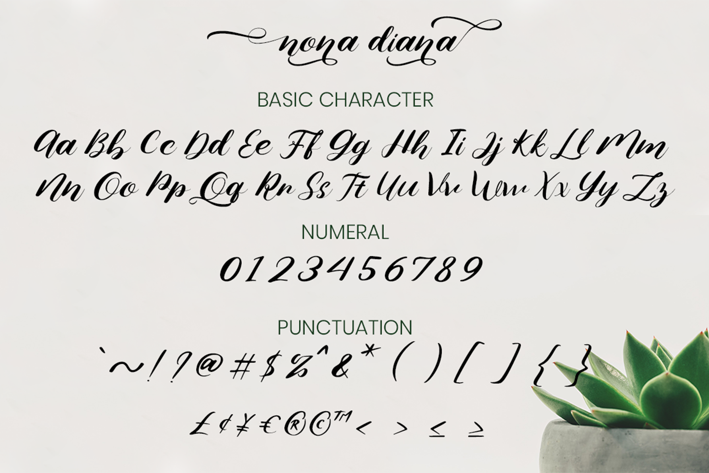 Nona Diana Script example image 7