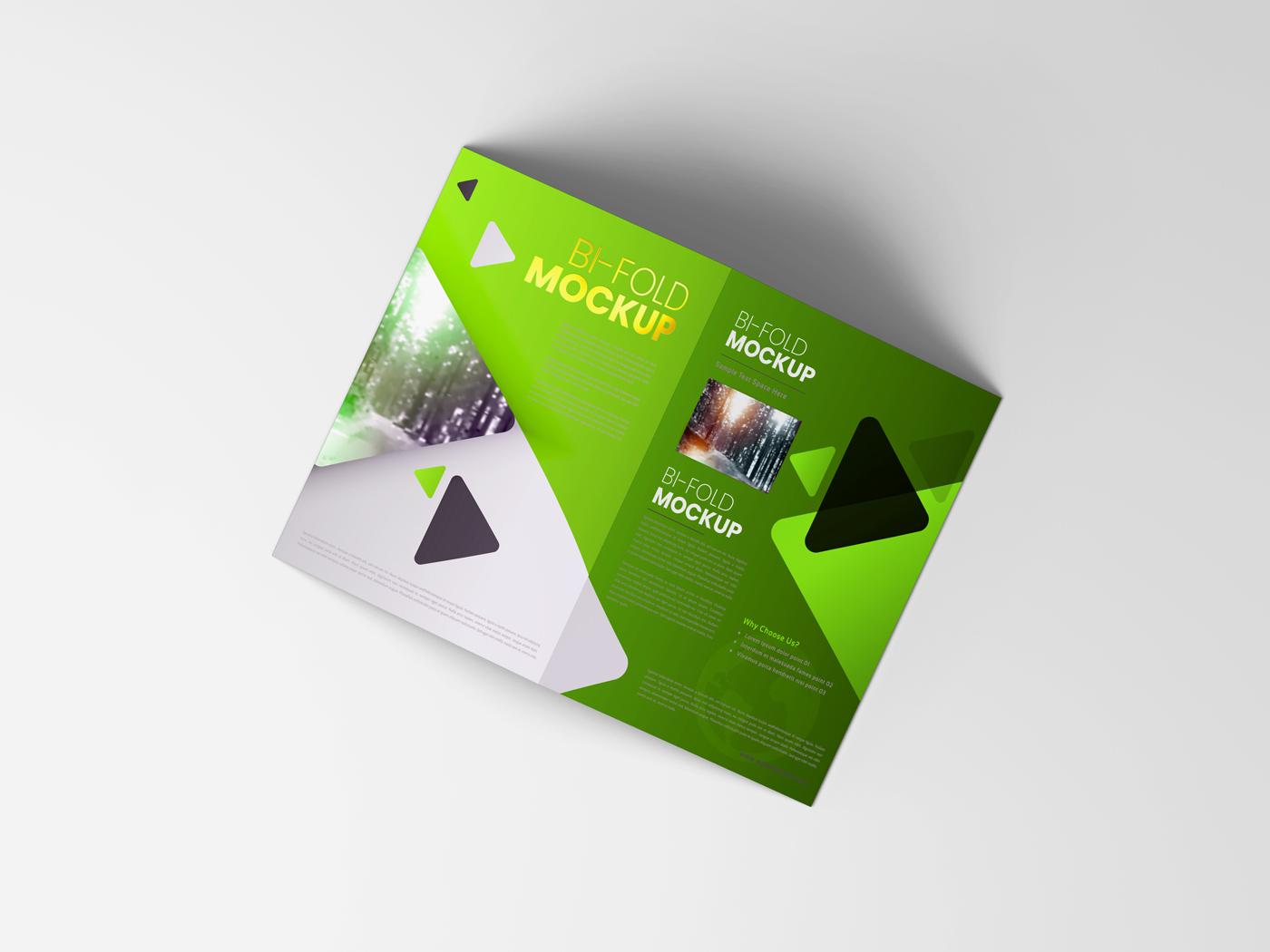 A4 Bifold Mockups V3 example image 16