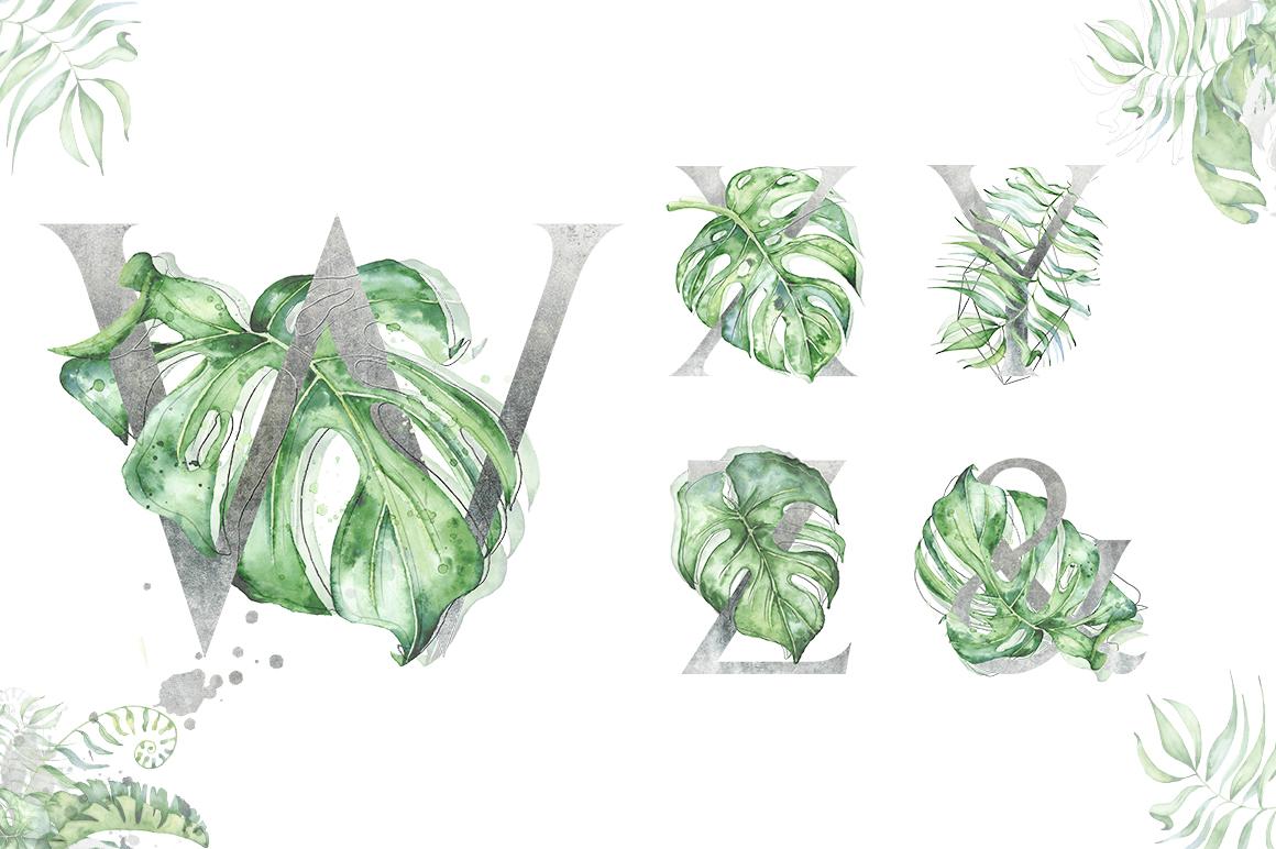 Silver Monstera - tropical alphabet example image 5