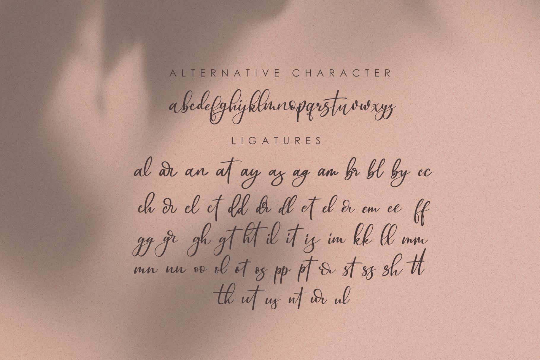 Omarta - Signature Font example image 10