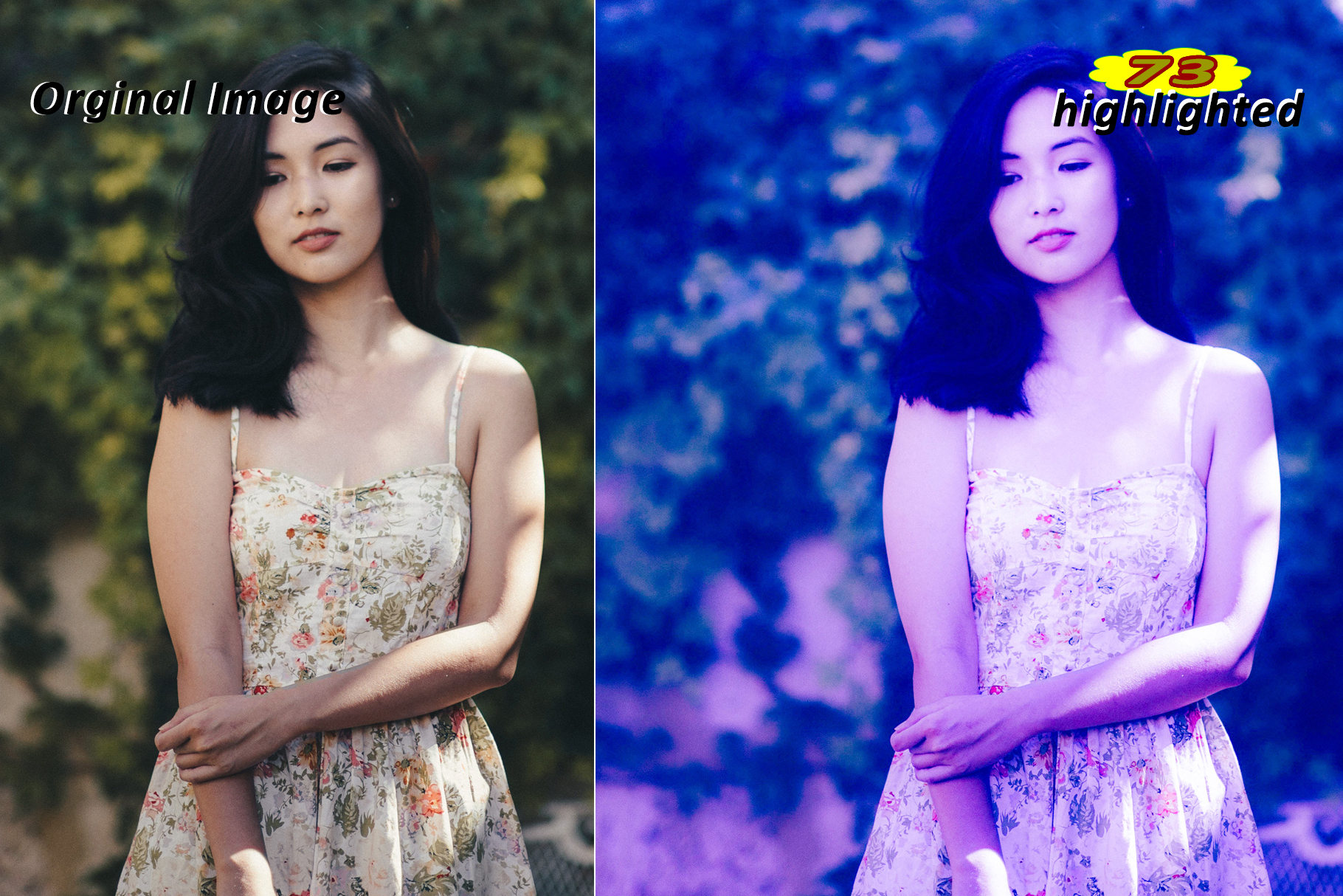 Highlighted Lightroom Presets example image 6