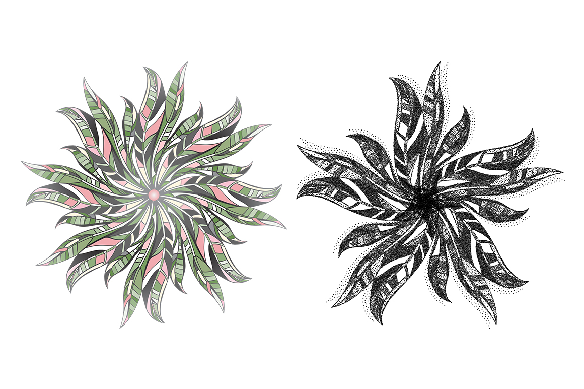LEAVES vector collection. example image 6
