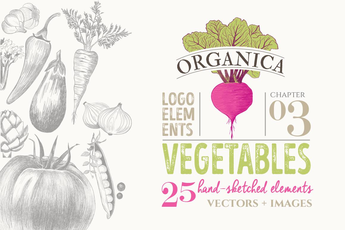 ORGANIC LOGO ELEMENTS  VEGETABLES example image 1