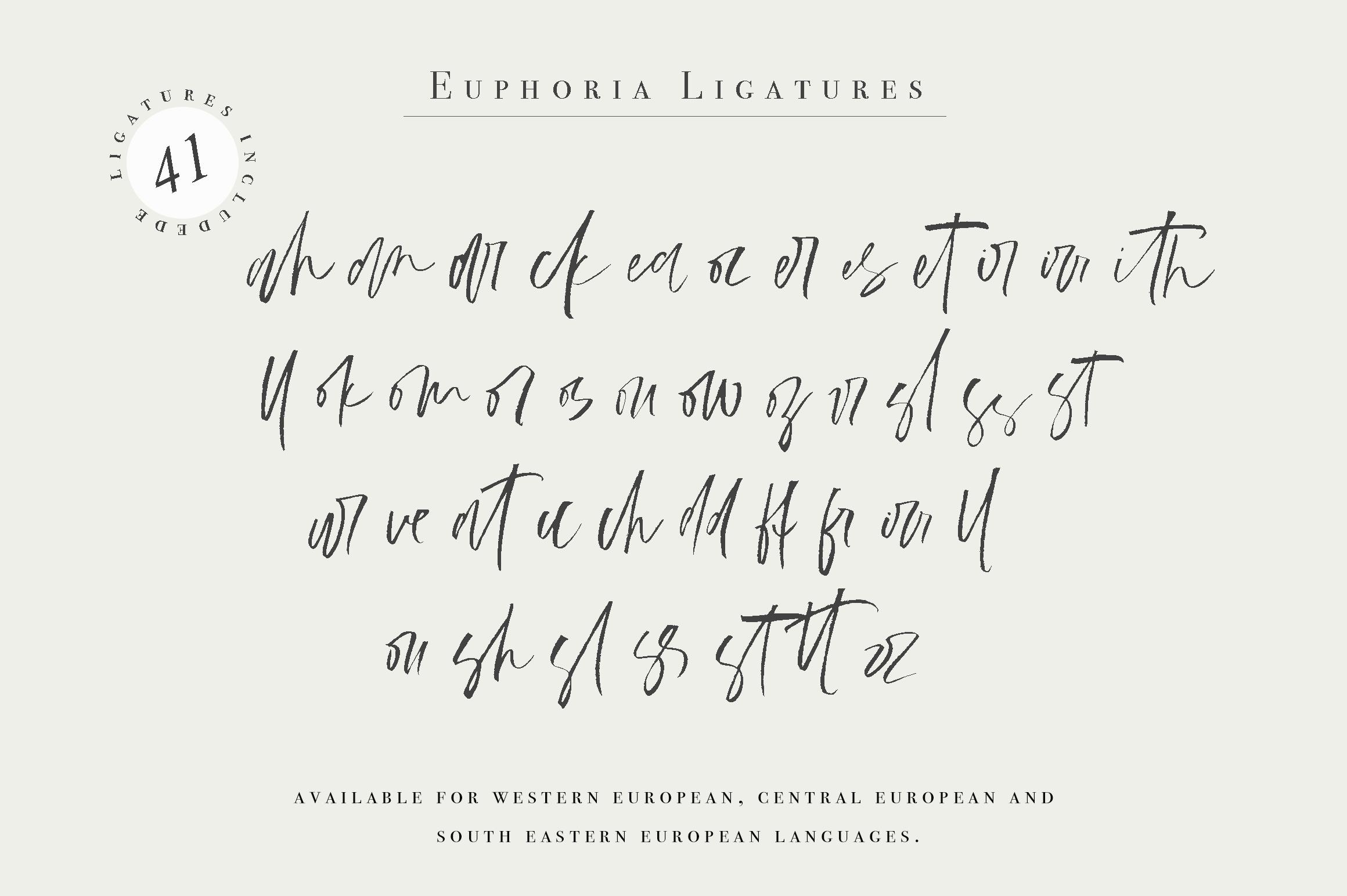 Euphoria | Handwritten Font example image 11