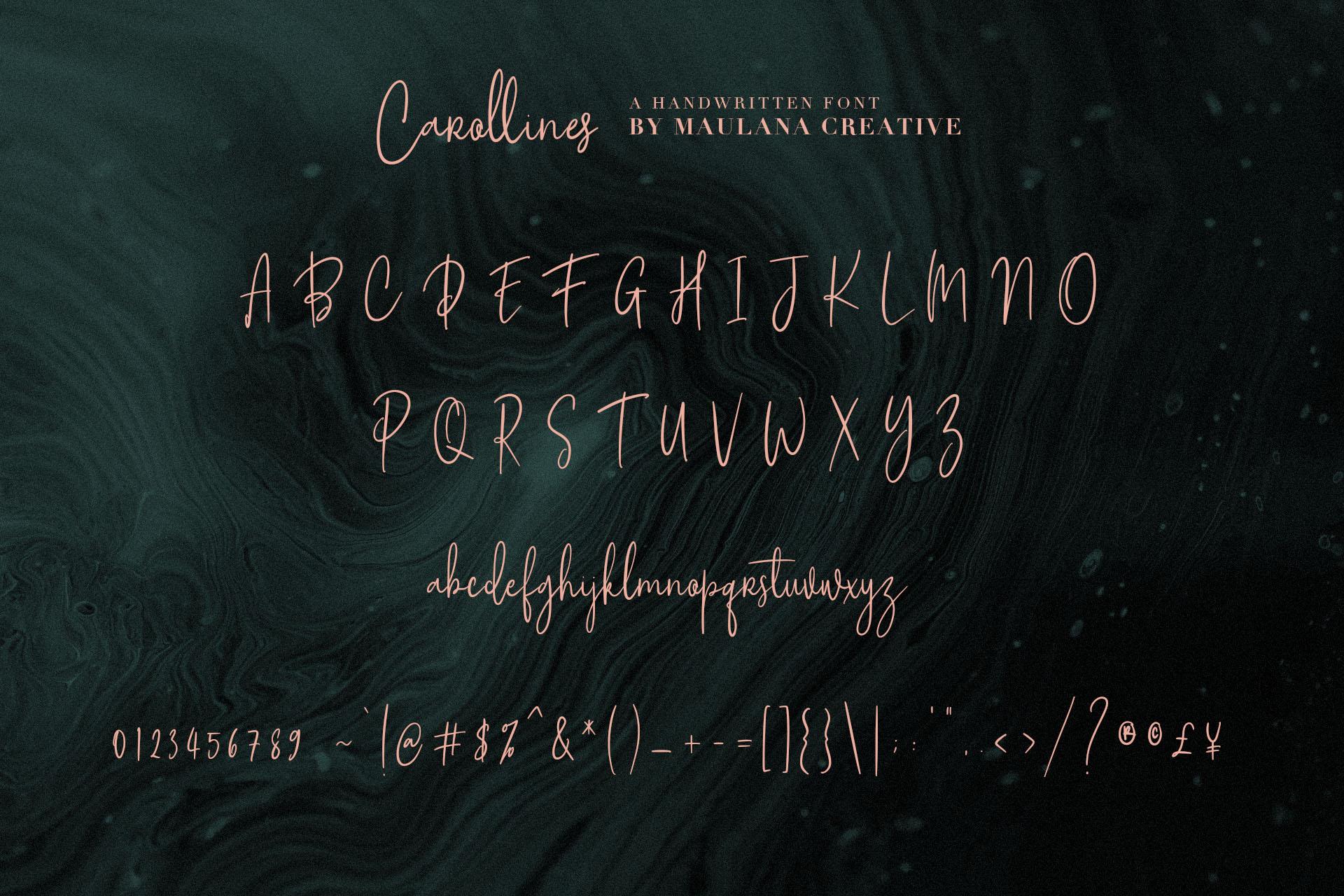 Carollines Script Font example image 10