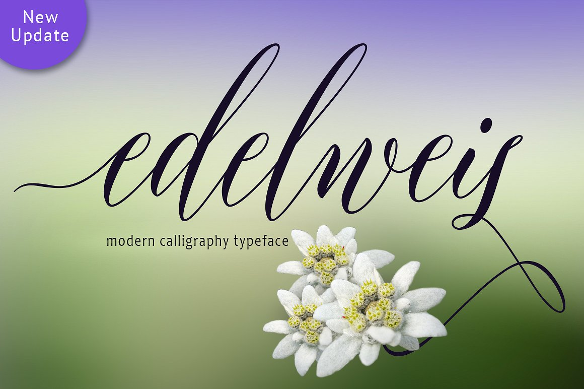 Edelweis Script example image 1