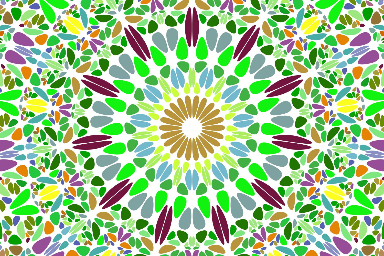 48 Floral Mandala Backgrounds example image 18