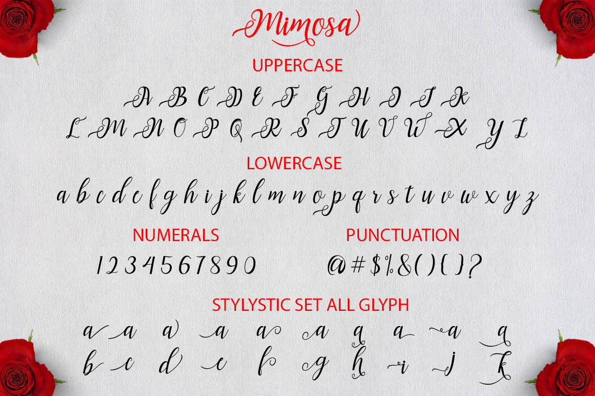 Mimosa Script example image 8