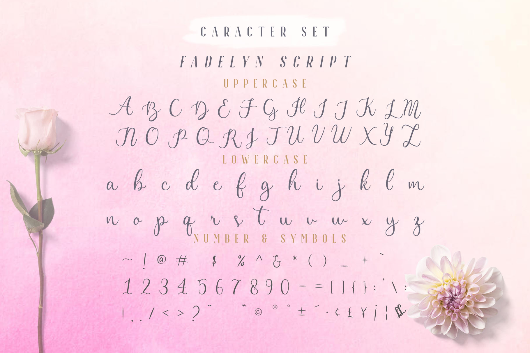 Fadelyn - Font Duo example image 7