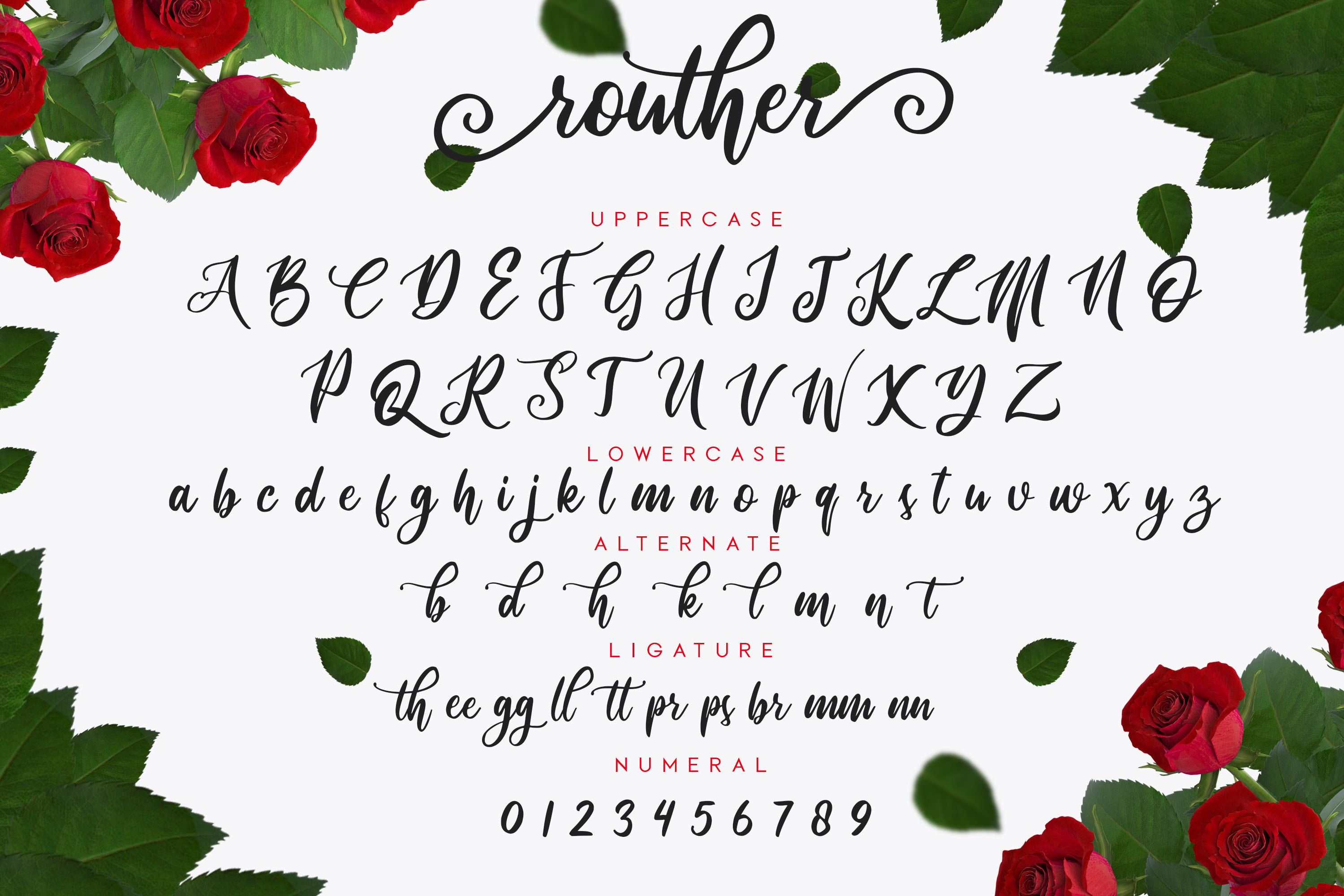 routher - beautiful script font example image 2