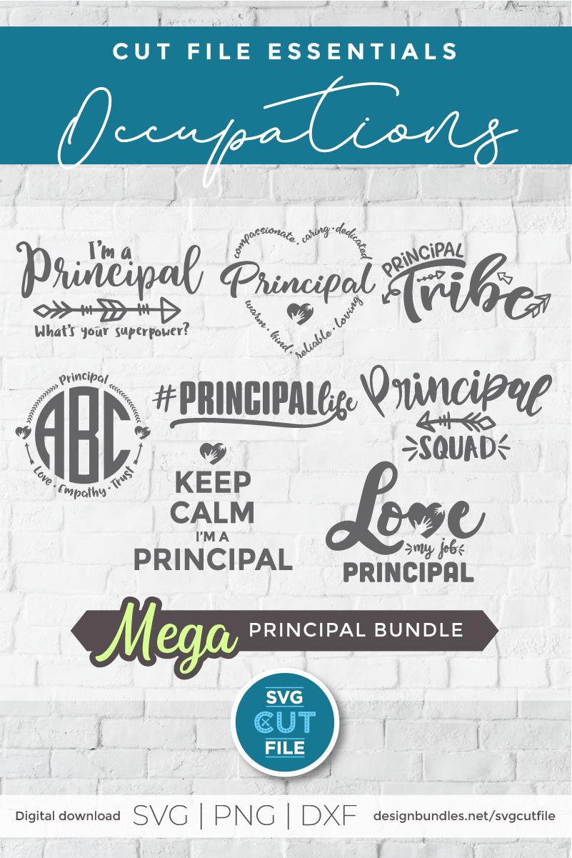 Principal svg bundle, Elementary school principal svg bundle example image 2