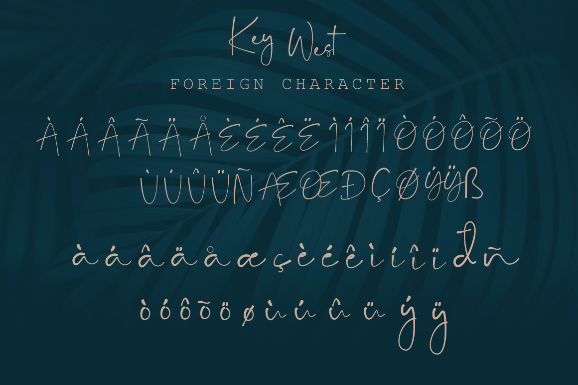 Key West Script Font with Extra example image 3