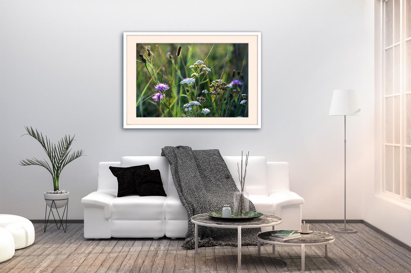 Nature photo, landscape photo, floral photo, summer photo, example image 3