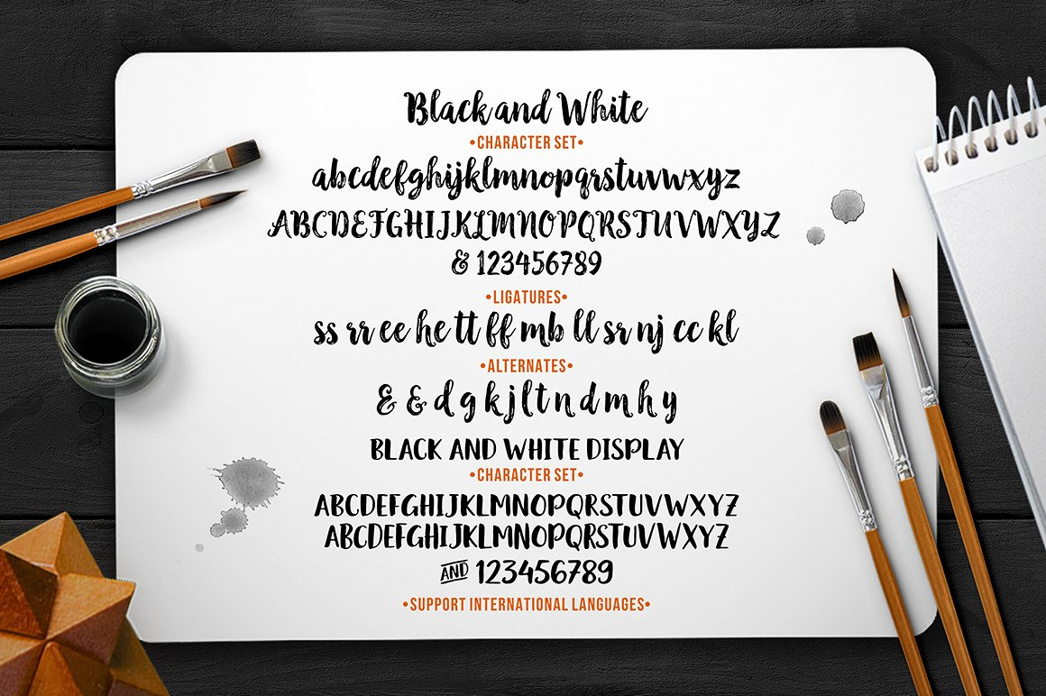 Black & White Font Duo example image 11