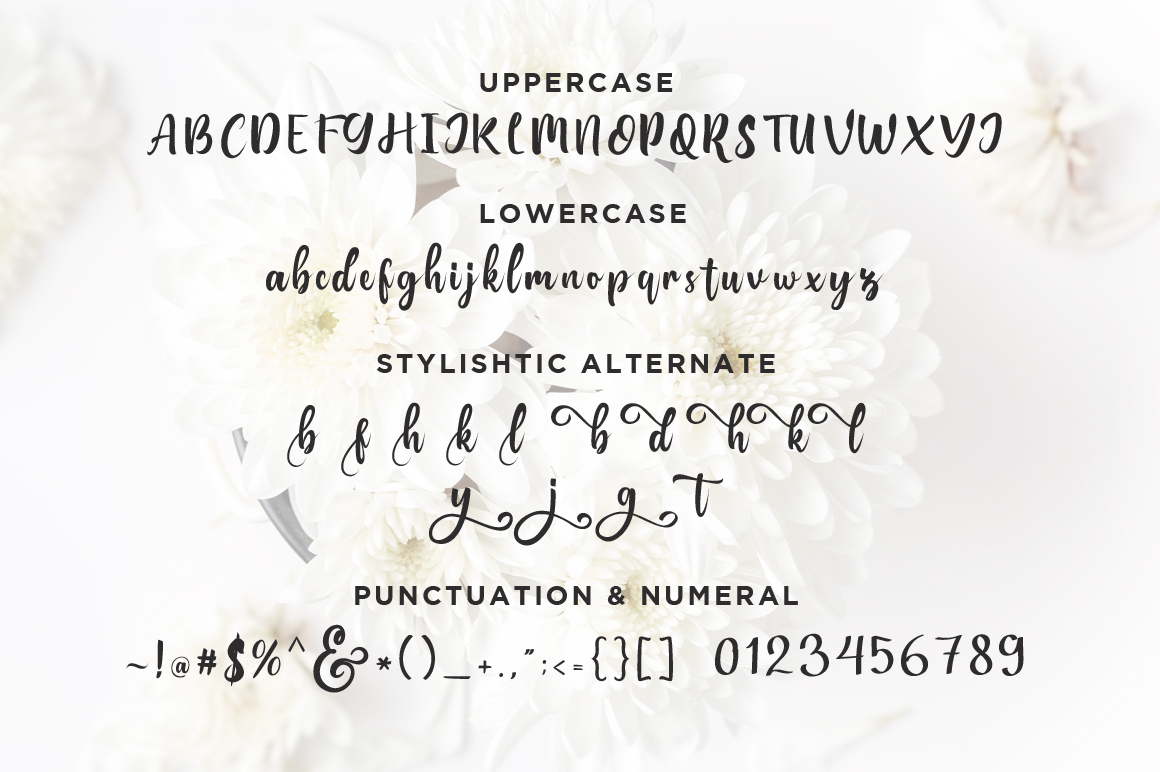 Bungalow Script example image 6