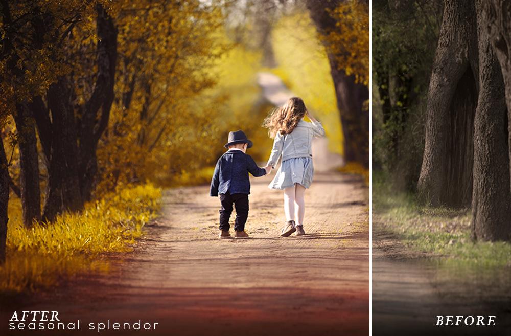 Seasonal Splendor Action Collection example image 6