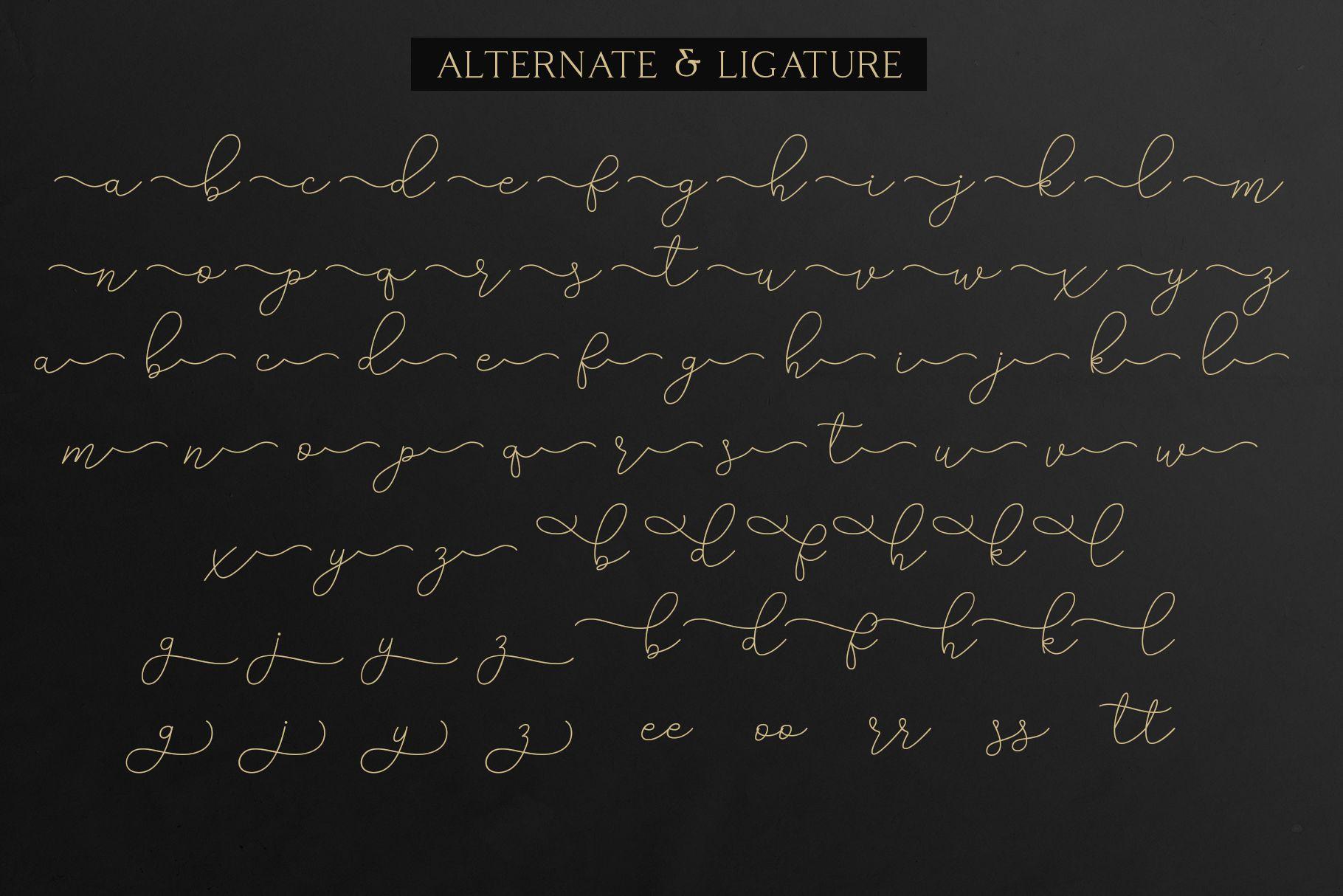 Adelya - Elegant Signature Font example image 10