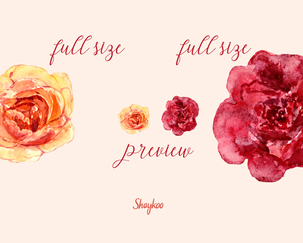 Gold Roses Clipart, Watercolor Flowers Clipart, Red Camelia, Warm ...